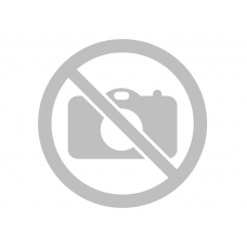 Детские санки-коляска Nika Детям DISNEY BABY 2